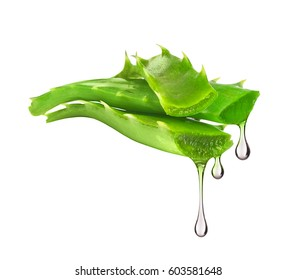 Essence from aloe vera plant drips from leaves, isolated on white background