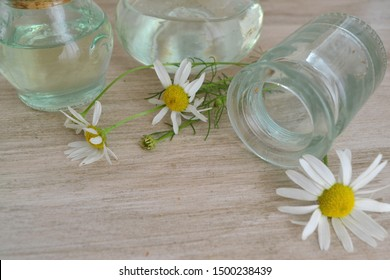 Essential aroma oil with camomile on shabby wooden rustic background.