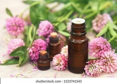 Essential oil bottles on medicinal clover flowers and herbs background, selective focus, toned