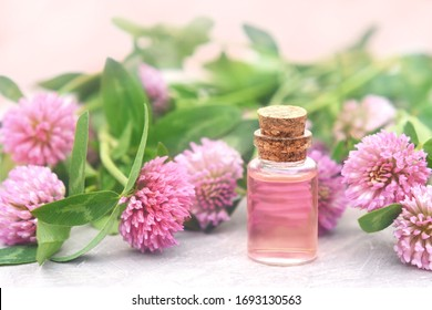 Essential oil bottles on pink clover flowers and medicinal herbs background, shallow DOF, toned