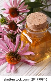 Essential oil of Echinacea purpurea closeup in a glass bottle. vertical