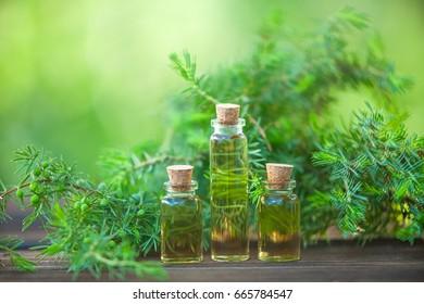 essential oil of flowers in beautiful bottle
