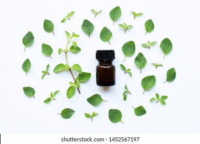 Essential oil with fresh oregano leaves on white background.