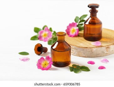 Essential oil in glass bottles with pink dog rose blooms. Aromatherapy treatment with flowers. Selective focus.