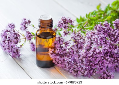 Essential oil of herb marjoram and a bouquet of fresh flowers of oregano on a white wooden background.