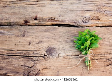 Essential oil and mint. Peppermint. Bunch of mint on a wooden background. Essential aroma oil with peppermint on wooden background. Selective focus.  oil made from mint. Green fresh mint