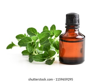 Essential oil of oregano in dark bottles with fresh  oregano leaves isolated on white background