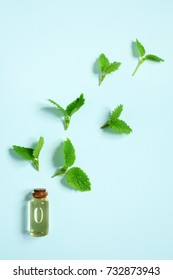 Essential oil of peppermint in a small glass bottle on a blue background. The view from the top.