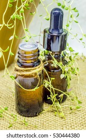 The essential oil of thyme in a small bottle.