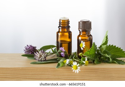 Essential oils and fresh salvia,camomile, melissa and clover