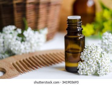 Essential yarrow oil