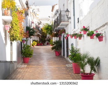 Estepona, Andalucia, Spain - December 25th 2017 : Estepona street with colorful pink plantpots