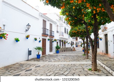 Estepona, Andalucia, Spain - December 25th 2017 : Estepona, orange trees and colored blue plantpots on a traditional cobbled street