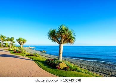 Estepona, Costa del Sol Occidental, Malaga, Andalusia, Spain, Iberian Peninsula