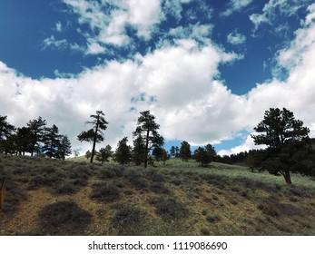Estes Park, Colorado / United States - April 25, 2018:  Colorado hillside views