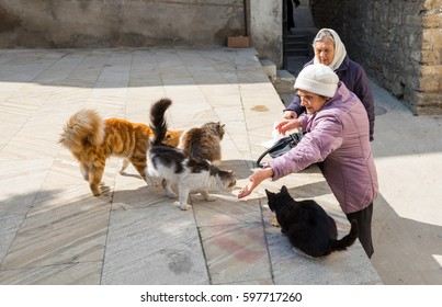 Estonia, Tallinn, March 06, 2017. Feeding homeless animals
