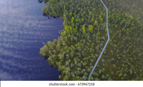 Estonian Bog (Sunrise, Drone Photography, Aerial Photos)