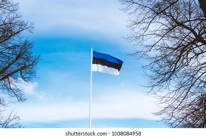 The Estonian flag on the square of freedom in Tallinn at sunny winter day