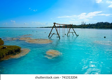 Estromatolitos Stromatolites in Bacalar Lagoon of Mexico in Quintana Roo