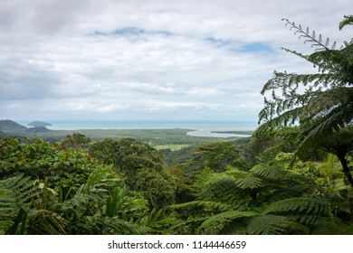 Estuary of the Daintree River into the pacific ocean
