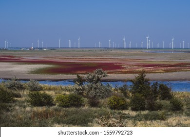 Estuary and trees on a background of a wind farm