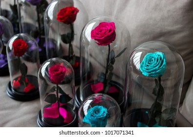 The eternal roses in the flask, Several roses. Preserved