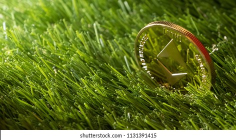 Ethereum coin on green grass