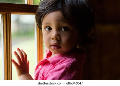 Ethnic toddler leaning on a window.
