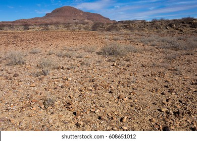 etrified forest engravings and rock paintings of Twyfelfontein and the Brandberg damaraland namibia africa