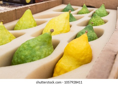 Etrog - citron, green and yellow In the store