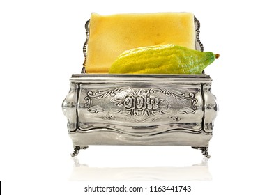Etrog in a decorated silver box, four species Sukkot Jewish holiday white background