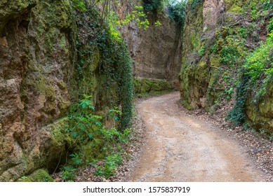 Etruscan Via Cava, one of the path dug into the tuff rock that connected ancient necropolis and several settlements in the area of Sovana and Sorano