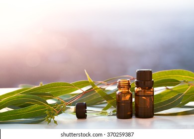 Eucalyptus aromatherapy essential oils in bottles