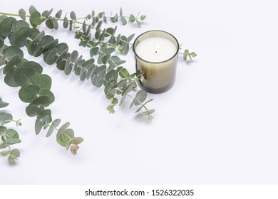 Eucalyptus Branches With Leaves with Candle in glass packaging decorated