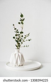 Eucalyptus branches in white ceramic vase on empty wall background