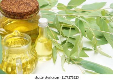 eucalyptus essential oil and eucalyptus