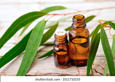 Eucalyptus essential oil and fresh eucalyptus leaves on the table