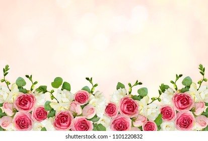 Eucalyptus leaves, freesia and pink rose flowers in a border arrangement on soft pink background. Top view. Flat lay.