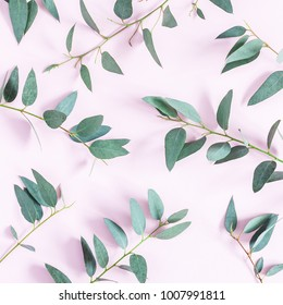 Eucalyptus leaves on pink background. Pattern made of eucalyptus branches. Flat lay, top view, square.