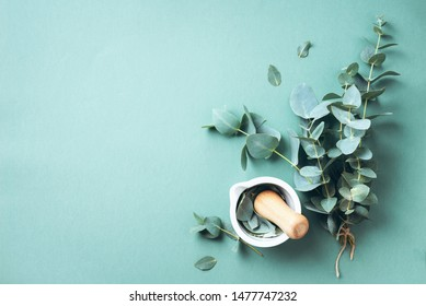 Eucalyptus leaves and white mortar, pestle. Ingredients for alternative medicine and natural cosmetics. Beauty, spa concept - Shutterstock ID 1477747232