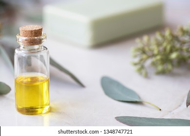 Eucalyptus oil in small bottle with leaves and soap in background.
