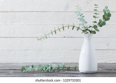 eucalyptus twigs in  vase on white wooden background