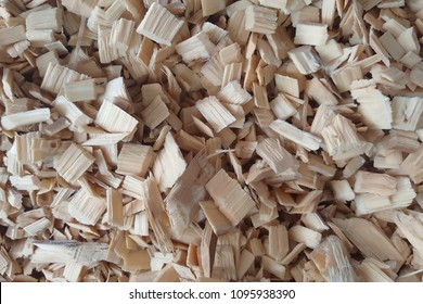 Eucalyptus woodchip for pulp making