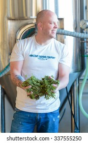 EUGENE, OR - NOVEMBER 4, 2015: Head brewmaster Brandon Woodruff holds some marijuana leaves used for brewing a hemp seed beer at the startup craft brewery Mancave Brewing.