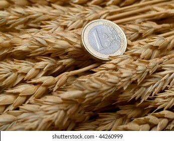 euro coin on a bottle of fresh ears of wheat