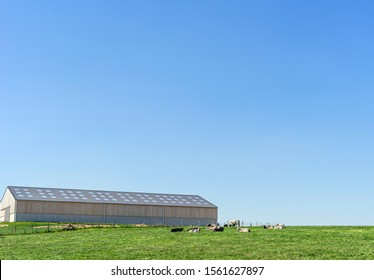 Europe, Belgium, Pont-а-Celles, May 5, 2019: Farm and  lying cows