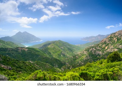Europe, France, Corse, Girolata gulf, in the background on the right Scandola Nature Reserve a Unesco heritage between Calvi, Porto and Galeria,