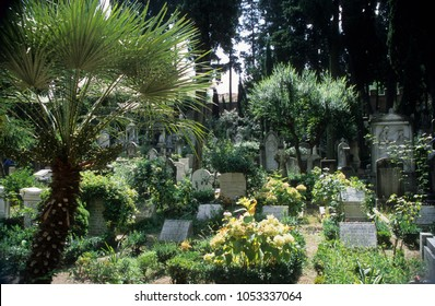 Europe Italy Rome 2001 Protestant Cemetery. Public garden with various grave headstones. Green trees and yellow flowers.