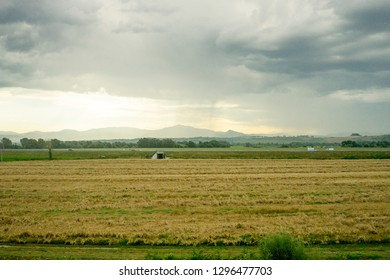 Europe, Italy, Rome to Florence train, a group of clouds in the sky over a green field