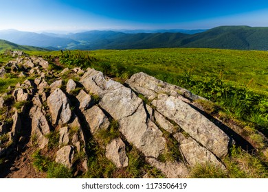 Europe, Poland, Podkarpackie Voivodeship, Bieszczady, Polonina Carynska - Bieszczady National Park, Chatka Puchatka